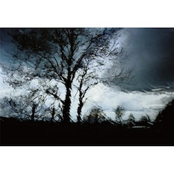 """Christophe Agou """"Untitled"""" Limited edition photograph from the series """"Face au Silence"""""""